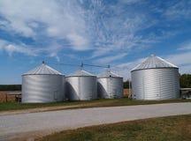 Campo do feijão de soja dos silos e espaço da cópia Foto de Stock