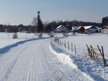 Campo do inverno foto de stock royalty free