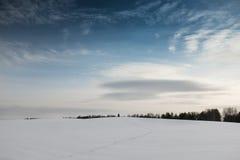 Campo do inverno com neve Fotografia de Stock