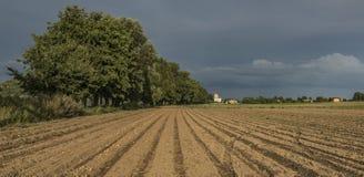 Campo do marrom da batata perto da vila de Pocaply fotos de stock royalty free