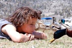 Campo do menino dos patos que fazem a face Imagem de Stock Royalty Free
