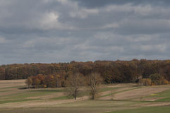 Campo do outono no Polônia Imagens de Stock Royalty Free