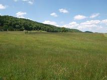 Campo do pasto Fotografia de Stock Royalty Free