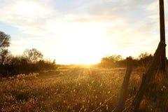 Campo do por do sol de Kansas imagem de stock