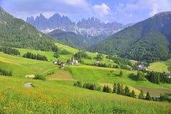 campo do prado na montanha Imagens de Stock