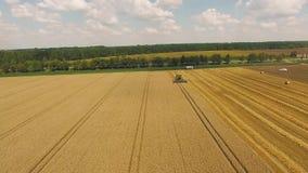 Campo do trigo amarelo Antena do trator no campo da colheita filme