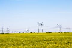Campo do trigo de amadurecimento com pilões da eletricidade Fotos de Stock