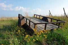 Campo do vagão do Wildflower Foto de Stock Royalty Free