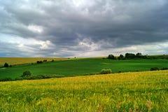 Campo do verão antes da tempestade Foto de Stock Royalty Free