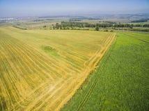 Campo dopo il raccolto dei cereali Fotografia Stock