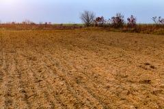 Campo dopo il tramonto del raccolto nel campo paesaggio nebbioso di bello autunno in Ucraina Fotografia Stock Libera da Diritti