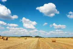 Campo dorato con le balle di fieno contro un cielo nuvoloso Fotografia Stock