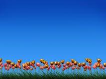 Campo dos tulips Ilustração Royalty Free