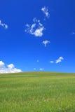Campo e céu Foto de Stock