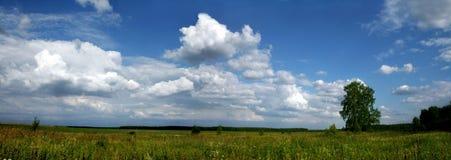 Campo e céu Imagem de Stock