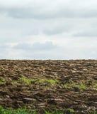 Campo e céu arados com nuvens Foto de Stock Royalty Free