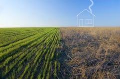 campo e casa Dois-coloridos Imagem de Stock