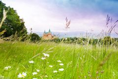 Campo e castelo Imagem de Stock Royalty Free