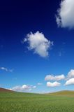 Campo e cielo Immagine Stock