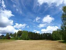 Campo e cielo blu Fotografia Stock