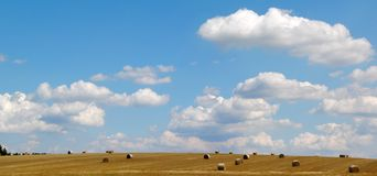 Campo e cielo blu Immagine Stock