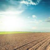 Campo e cielo blu arati di agricoltura nel tramonto Fotografia Stock