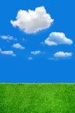 Campo e cielo blu di erba verde Fotografie Stock