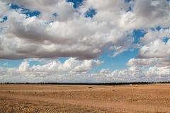 Campo e cielo nuvoloso, Marocco Fotografie Stock