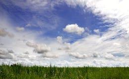 Campo e cielo verdi Immagini Stock