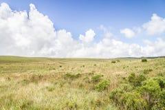 Campo e colline Immagini Stock
