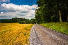 Campo e estrada de terra de exploração agrícola em Carroll County rural, Maryland Fotos de Stock