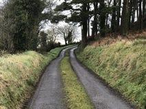 Campo e estrada secundária irlandeses Fotos de Stock Royalty Free
