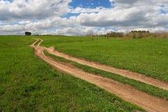 Campo e estrada verdes a em qualquer lugar. Imagem de Stock Royalty Free