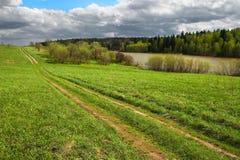 Campo e estrada verdes a em qualquer lugar Imagens de Stock Royalty Free