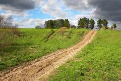 Campo e estrada verdes a em qualquer lugar Imagens de Stock
