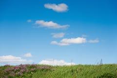 Campo e fondo rurale del cielo blu nuvoloso Immagini Stock