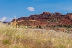 Campo e formação de rocha vermelha verão da viagem por estrada no Arizona, EUA fotos de stock royalty free