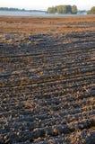 Campo e foschia gelidi arati del terreno coltivabile di autunno Immagini Stock Libere da Diritti
