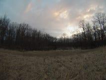 Campo e lagoa Fotografia de Stock