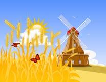 Campo e moinho de trigo Fotos de Stock