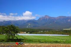Campo e montagna di verdure immagini stock