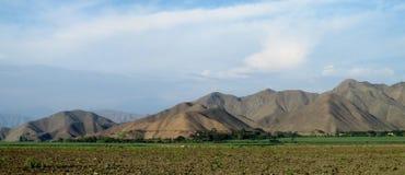 Campo e montagne arabili di verde dell'aratro del paesaggio rurale dietro Fotografia Stock
