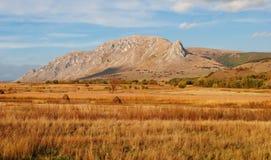 Campo e montagne del raccolto Fotografia Stock Libera da Diritti