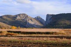 Campo e montagne del raccolto Immagini Stock Libere da Diritti