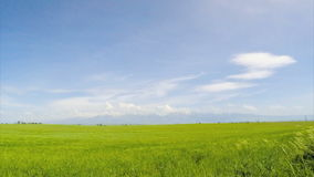 Campo e montagne nelle nuvole video d archivio