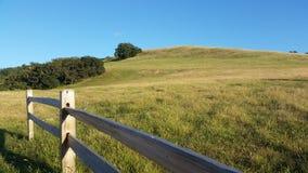 Campo e montanha de grama Fotos de Stock
