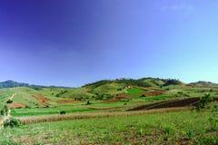 Campo e montanha no chiangmai Foto de Stock Royalty Free