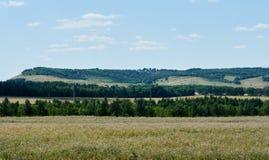 Campo e montanhas Fotos de Stock Royalty Free