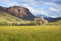 Campo e montanhas em Wyoming foto de stock
