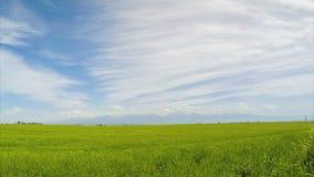 Campo e montanhas nas nuvens vídeos de arquivo